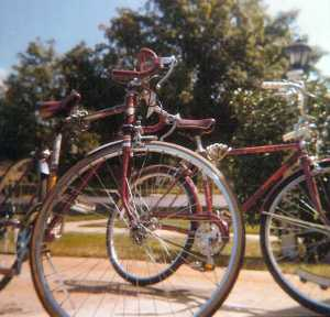 Bikes. Taken with a Kodak Duaflex II camera.