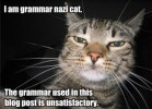 Defending good grammar, sort of